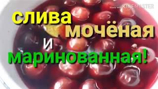 СЛИВА,маринованная по-чешски и СЛИВА МОЧЁНАЯ!Очень просто и вкусно!