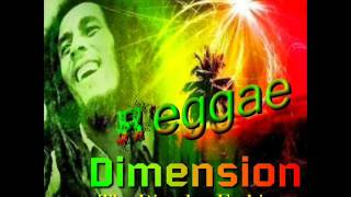 REGGAE DIMENSION THE DISCPLAY FASHION
