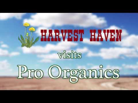 Harvest Haven Visits Pro Organics