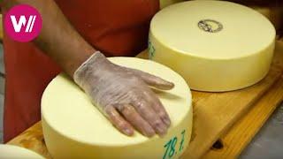 Käse frisch von der Alp! Käse herstellen und reifen lassen