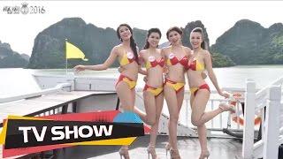 Ngắm nhìn 30 người đẹp Hoa hậu Việt Nam 2016 'rực lửa' trong phần thi bikini