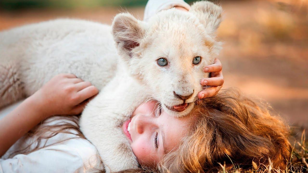 Девочка Миа и белый лев — Русский трейлер (2018)