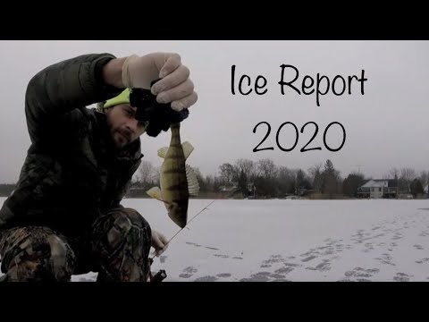 Little Lake Ice Report Puslinch, Southern Ontario Ice Fishing