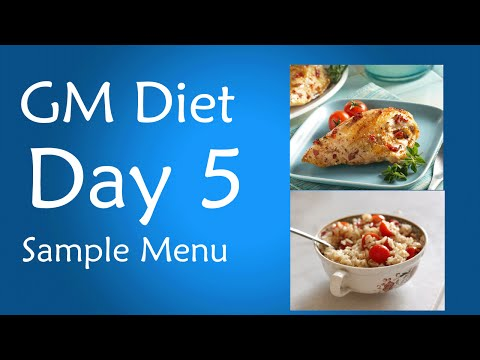 general motors diet day 5 vegetarian