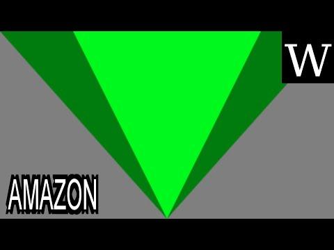 AMAZON (company) - WikiVidi Documentary