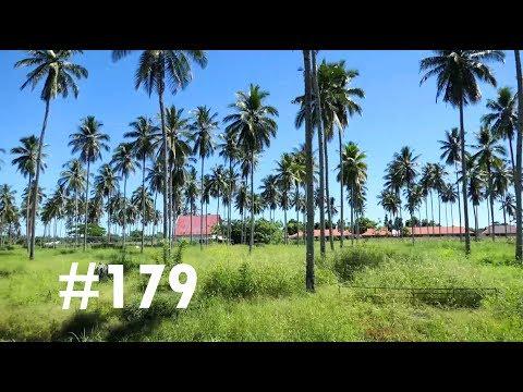 VLOG #179 SUR LES ROUTES SINUEUSES DE SULAWESI,DE MANADO À GORONTALO