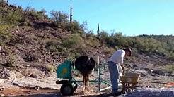 Gold-drum in Black Canyon City Az. 12-26-13