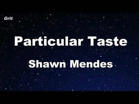 Particular Taste - Shawn Mendes Karaoke 【No Guide Melody】 Instrumental