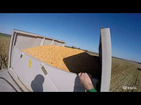 CLAAS TUCANO 580 Kukorica Aratás VLOG