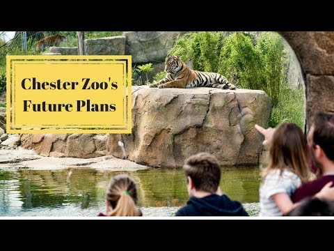 The Future Plans For Chester Zoo