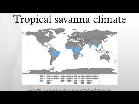 Tropical savanna climate
