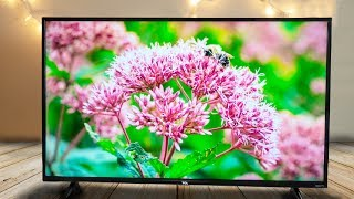 TCL 43 Inch 4K Roku TV Review