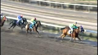 Vidéo de la course PMU PREMIO LITIO