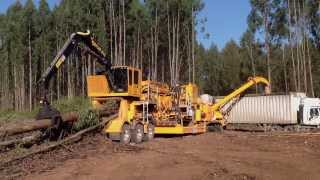 CBI Magnum Force Flail 604 & Magnum Force 754 Disc Chipper
