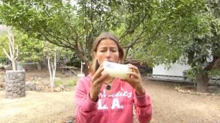 Aloe Vera Gel Creme selber herstellen - Chemiefreie Hautpflege