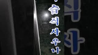 팝콘tv 홍이형 유명 폐찜질방 풀버전