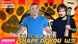 Ed Sheeran Shape of You VERSÃO SAFADÃO