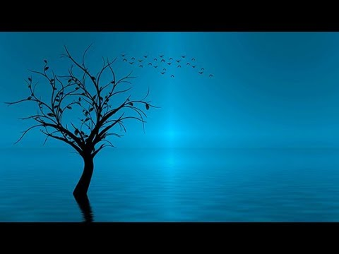 New Age Music: Spa Music; Relaxing Music; Reiki Music; Yoga Music; Relaxation Music;  🌅