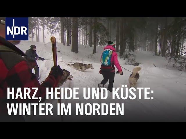 Erlebnis Winterzauber | die nordstory | NDR