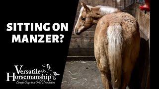 SITTING ON MANZER? // Versatile Horsemanship