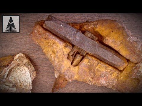 De Hamer van 140 miljoen jaar oud!?