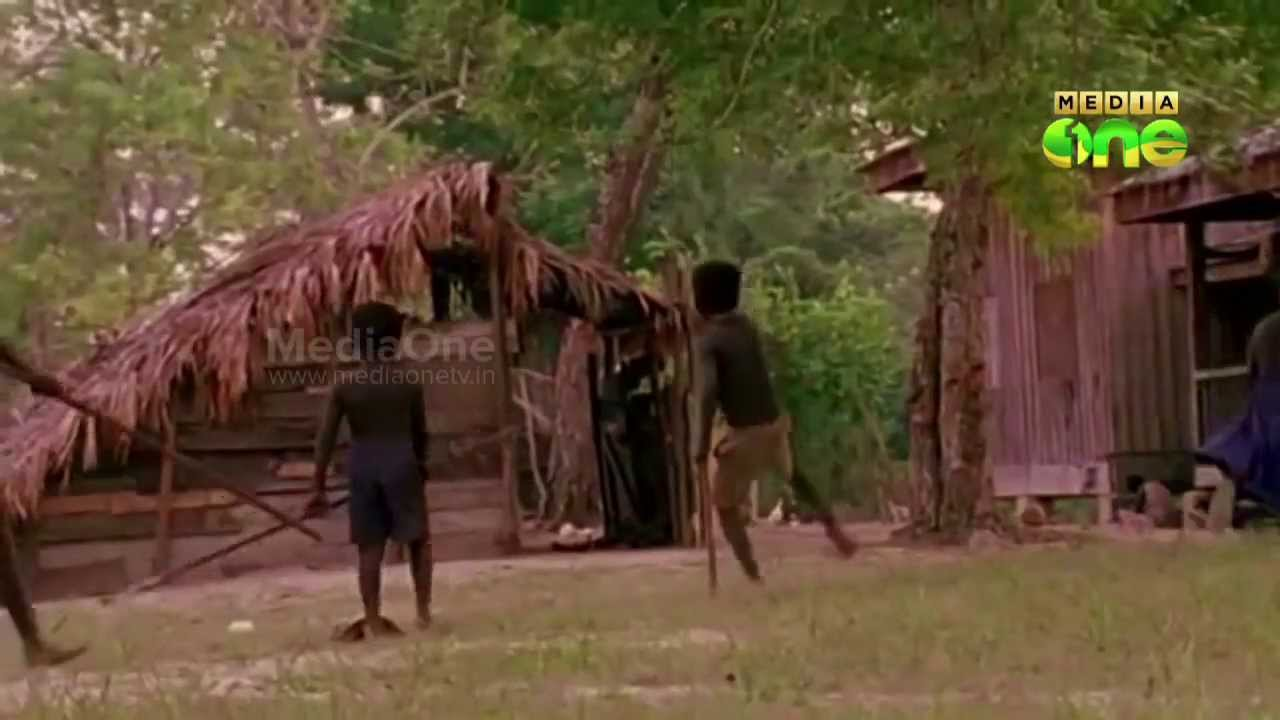 Jarawa tribe now face sexual abuse by outsiders on Andaman Islands