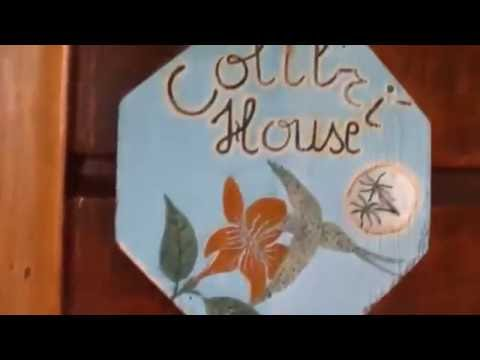 Colibri House - Placencia Village - Belize - Rental house - Beachfront rental