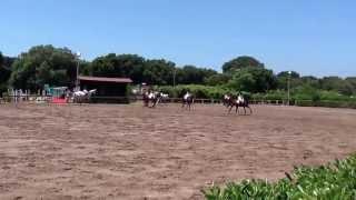 Carosello circolo ippico Crazy Horse (2° parte)