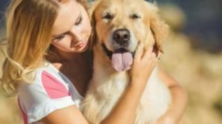 Собака-лучший друг. Грустная песня. Советую посмотреть😞😖😧