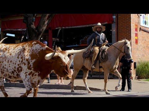 Roadfood: Dallas To Austin, Texas