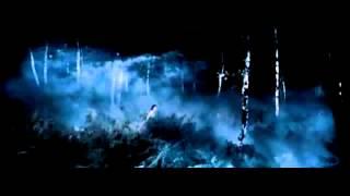 Insomnium - Lay The Ghost To Rest (Subtitulado al español)