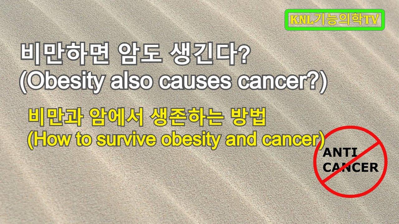 비만과 암-비만으로부터 사는 법-면역계56 (Obesity also causes cancer?-immune system 56)