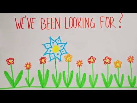 Public Relations Committee - Are you the new flower we've been looking for?