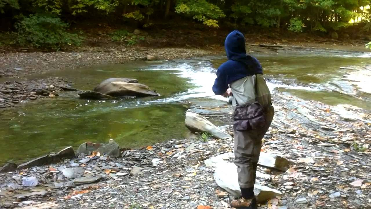 Pennsylvania steelhead fishing lake erie tributaries for Fishing in pennsylvania