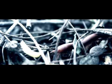 MDW (Makan Di Warung) - AJAL AROGANSI (Official Music Video)