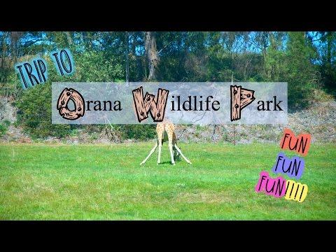 Orana Wildlife Park video! So much fun (New Zealand)