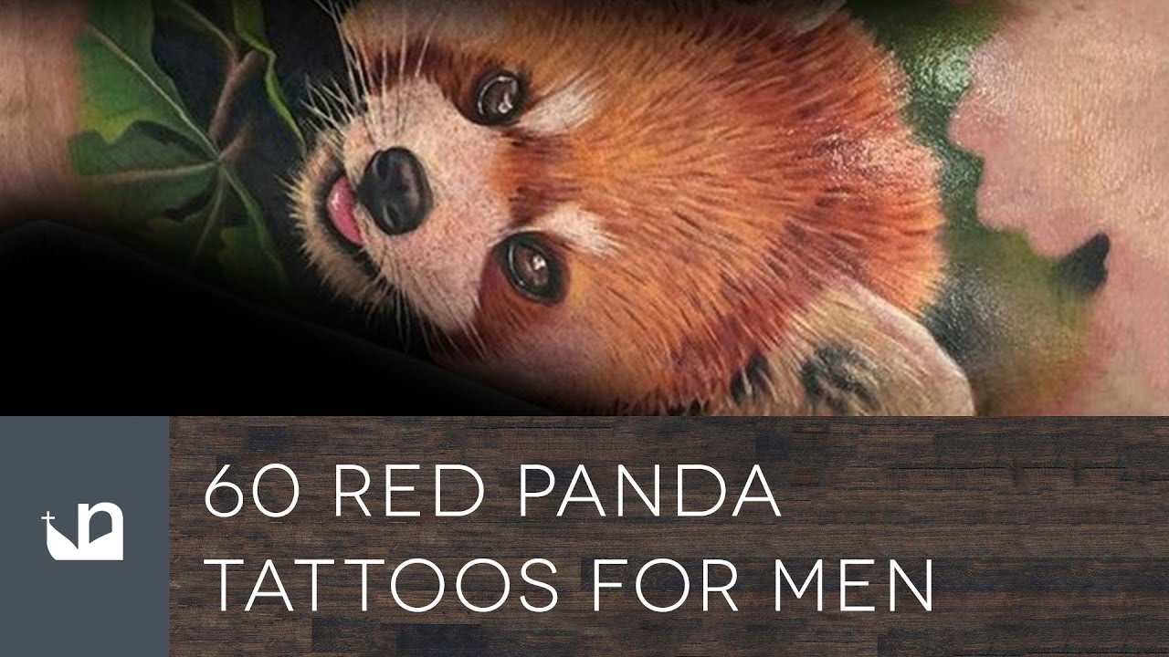 60 Red Panda Tattoo Designs For Men – Animal Ink Ideas