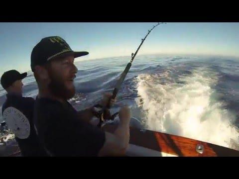 Current crew offshore fishing california 2015 tuna for Tuna fishing california