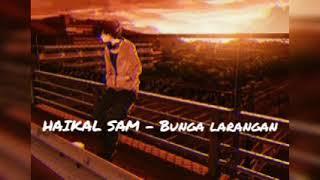 Bunga Larangan - UG14 | COVER BY HAIKAL SAM |