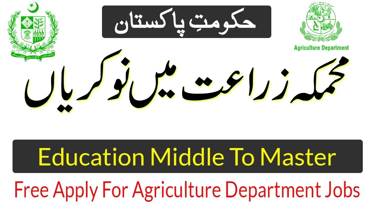 online jobs for intermediate students in pakistan