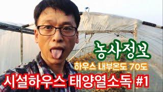 시설하우스 태양열소독(열처리) 과정#1 - 파파스트리농…