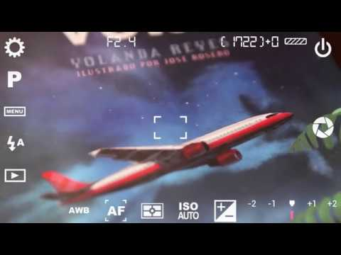 volar---yolanda-reyes