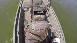 south texas bowfishing gar