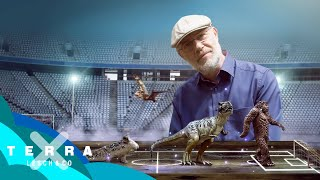 Die Geschichte des Lebens auf 105 Metern | Harald Lesch