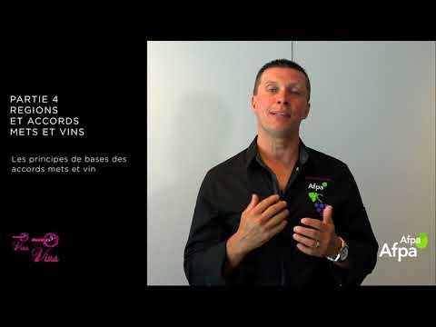 UA4 - Vidéo 3 - Les accords mets et vins