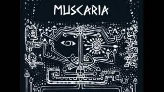 Muscaria - False Awakening (Original Mix)