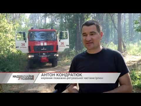 Підозрюють забудовників: Біля житлових будинків на Київщині підпалили ліс