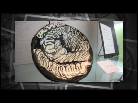 CA Lottery: American Legion High School (Sacramento) Art Display
