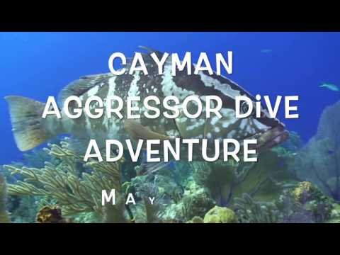 Cayman Aggressor Adventure