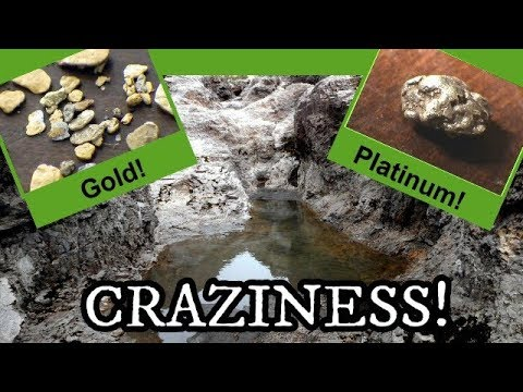Craziness! Gold Panning Fraser River BC (CRAZY TRIP! 2018)